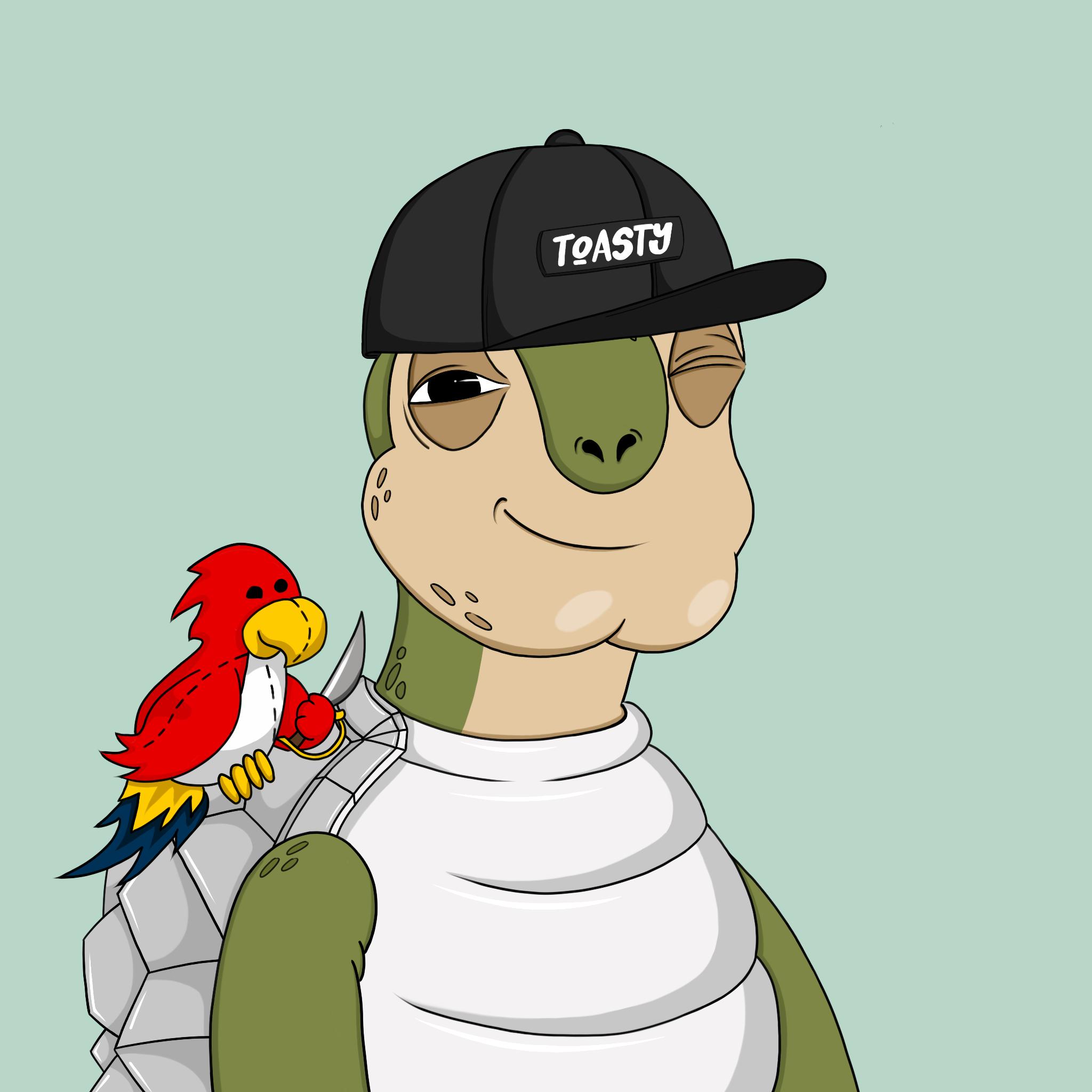 Toasy Turts #3413